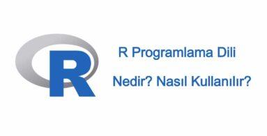 R Programlama Dili Nedir? Nasıl Kullanılır?