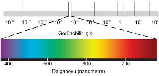 Işıkların Dalga Boylarına Göre Sıralandığı Elektromanyetik Spektrum.